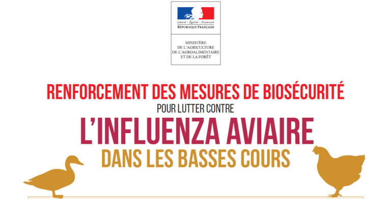 Read more about the article Influenza aviaire